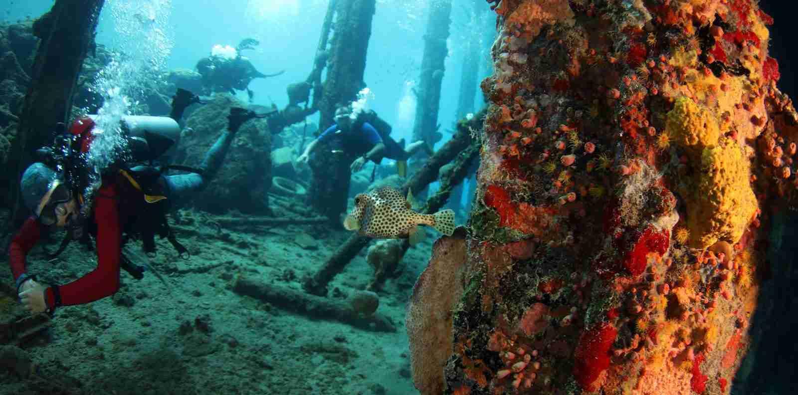 Jan Thiel Bay Diving