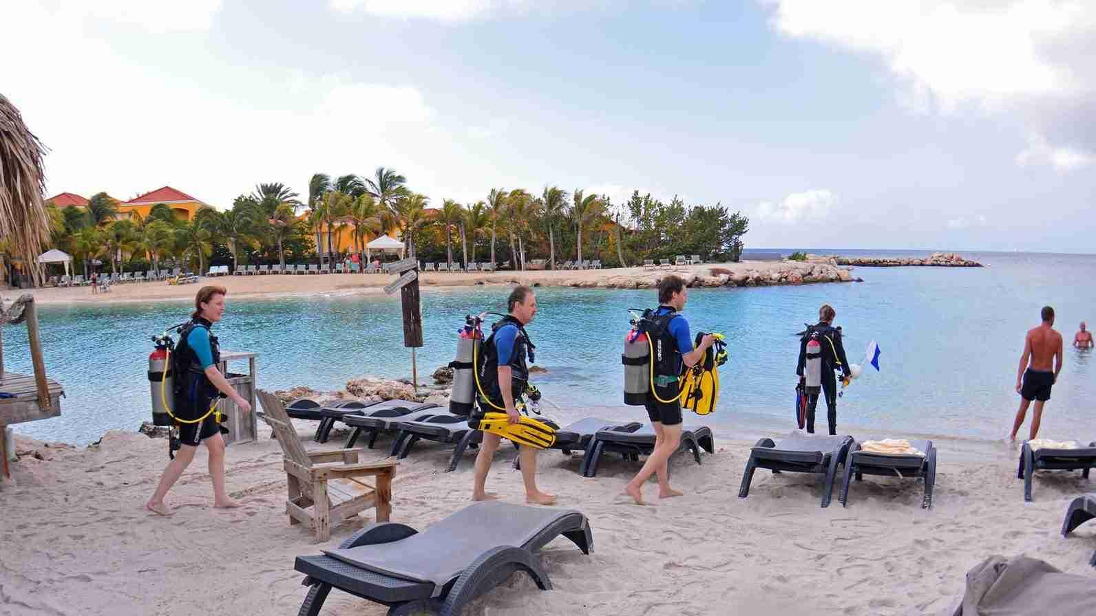 Guided Shore Diving at LionsDive Beach Resort | Ocean Encounters