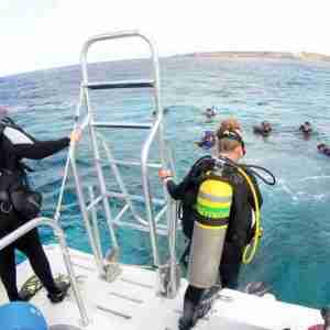 Enriched Air Nitrox Specialty Diver Course