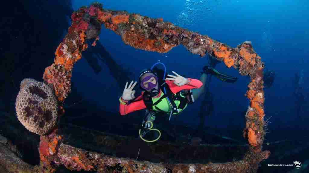 Wreck Diving in Curacao   Ocean Encounters