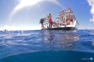 Ocean Encounters boat diving Curacao