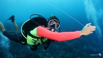 Ocean Encounters Drift Diving Specialty PADI SSI
